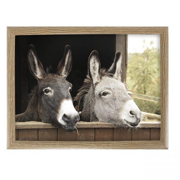 schootkussen-twee-ezels