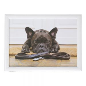 schootkussen-franse-bulldog