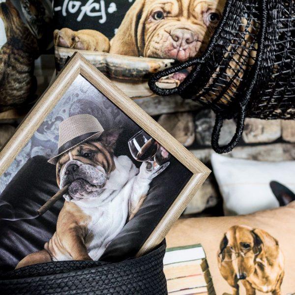 schootkussen-engelse-bulldog