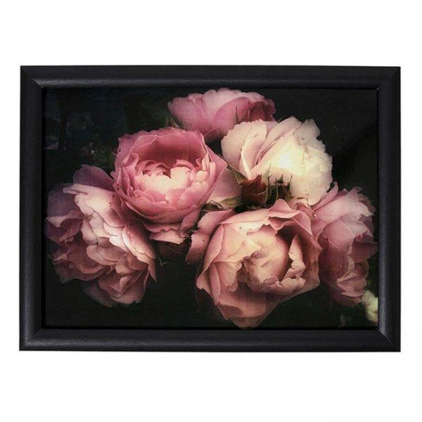 schootkussen-rozen-in-zwart
