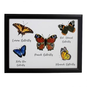 schootkussen-vlinders